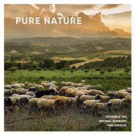 pure-nature.jpg